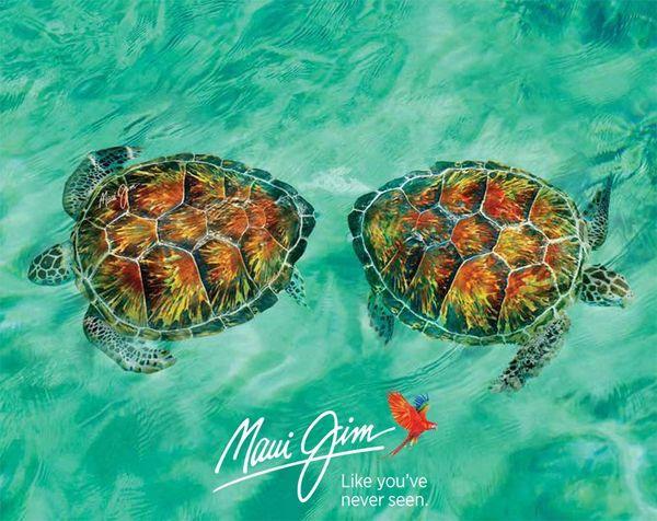 Maui Jimteknősök