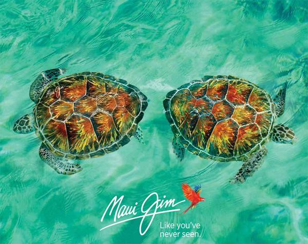 Maui Jim teknősök