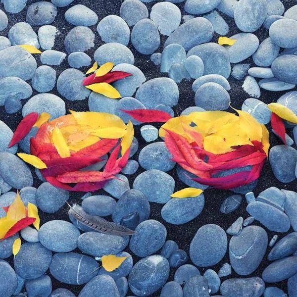 Maui Jim levelek